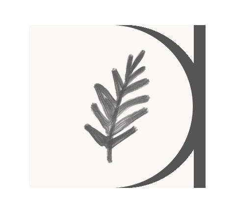 icon-leaf